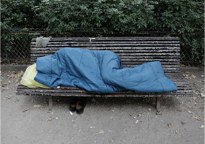 The MIgrants, 2009